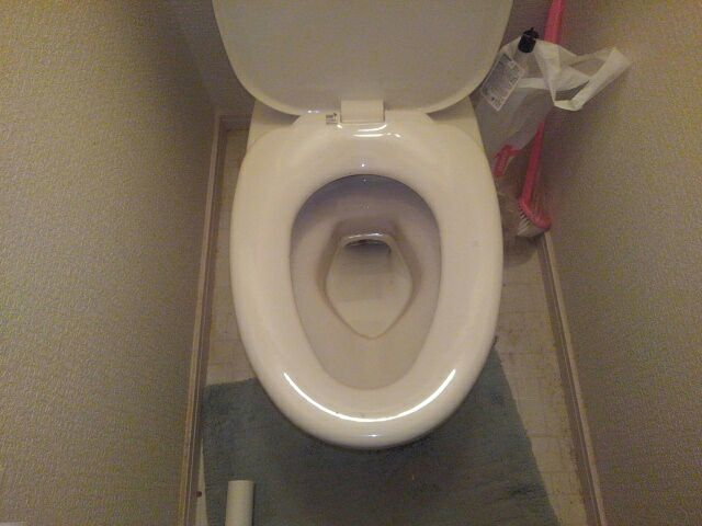 安佐南区伴東 トイレつまり つまり除去