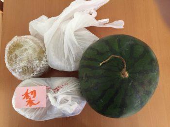 野菜保存1